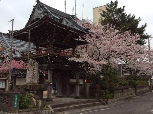 日蓮宗普門寺恒例「夜桜の宴」