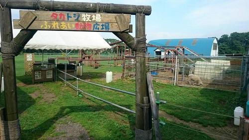 北海道恵庭市にあるタカトシ牧場に行きました〜のフォトレター紹介...