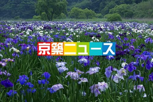 紫陽花の名所で剪定会(豊前市)
