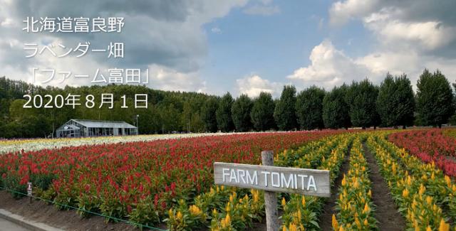 北海道富良野ラベンダー畑の2020年夏はゆっくり鑑賞できます