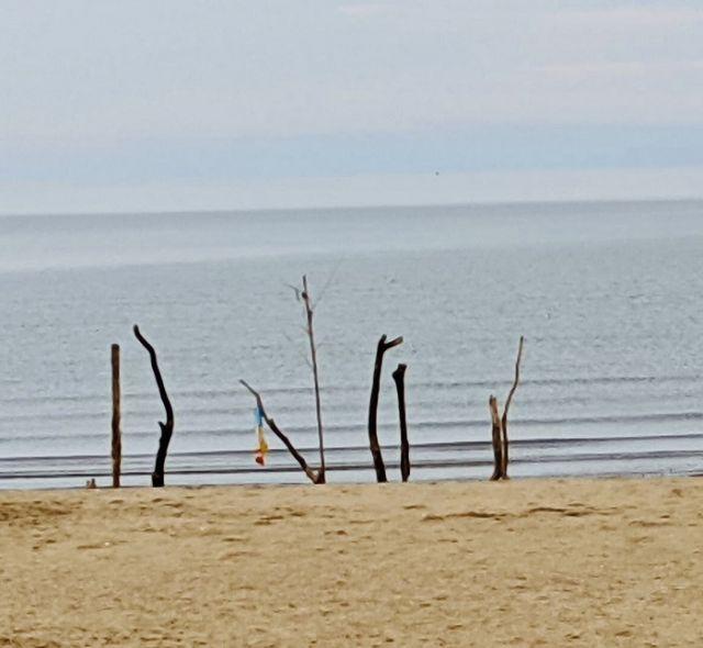 砂浜アートに安らぎ感じて
